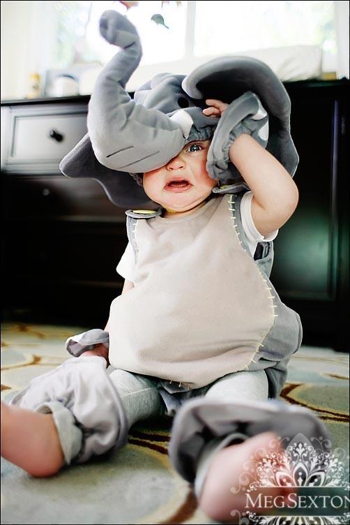 Concord, CA baby photographer