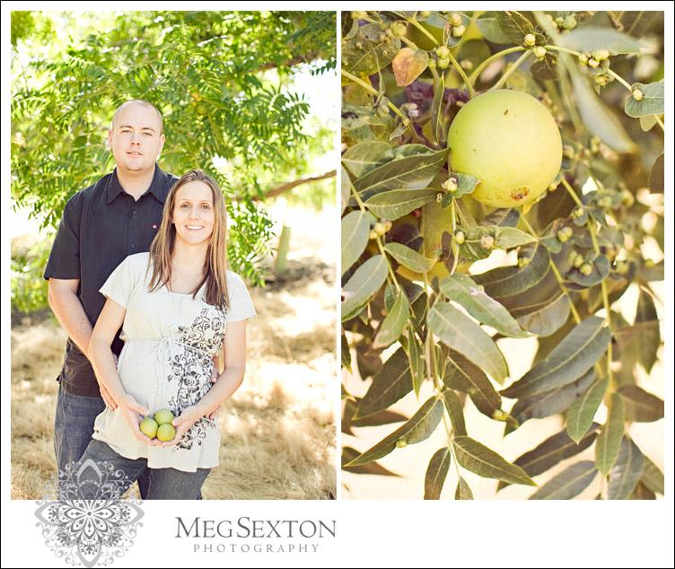East Bay maternity photos