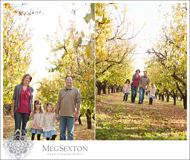 holiday family photos, brentwood ca