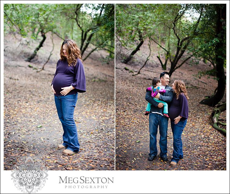Danville maternity photographer