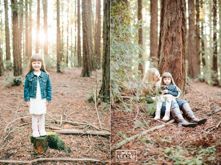 Bay Area photographer, northern california maternity photographer, meg sexton, meg sexton photography, maternity photographer, bay area maternity photos, sf photos, san francisco family photographer, fine art maternity photography,wedding and lifestyle photographer, film photographer, san francisco film photographer