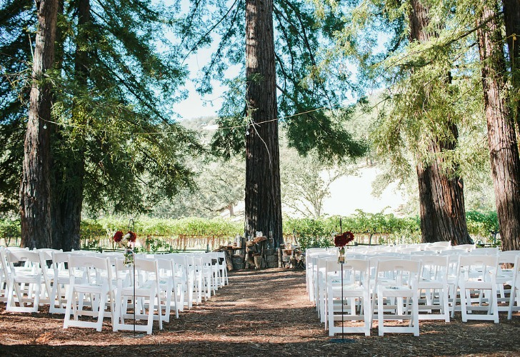 Meg Sexton Photography, Rustic Wedding, DIY wedding, outdoor wedding, Nelson Family Vineyards, magenta, plum, beige, lace, Farmgirl Flowers, Storyline Photography, Zack's Catering, Meg Sexton, Bay Area Wedding Photographer